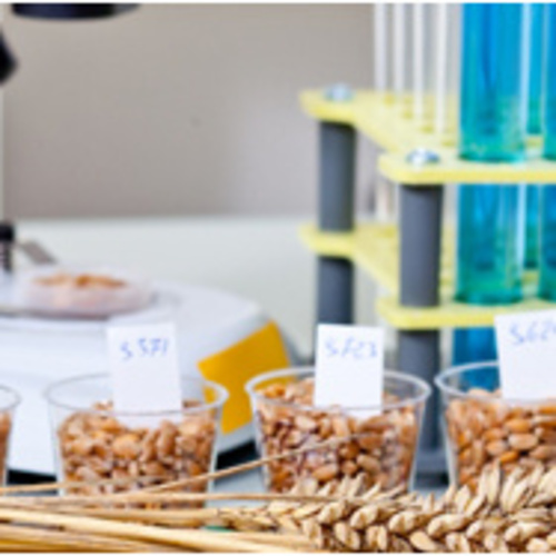 BTS STA (Sciences et Technologies de l'Alimentation)