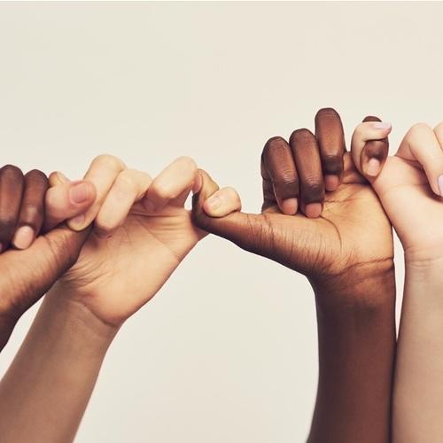 Certificat : Coopération et Solidarité Internationale