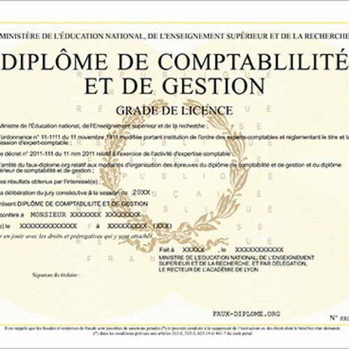 Diplôme de Comptabilité et de Gestion (DCG)